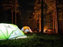 Camping en famille : un rendez-vous avec la forêt
