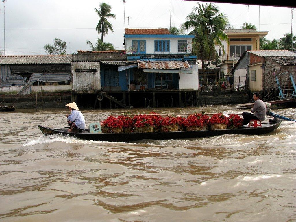 Marché flottant de Cai Be, Vietnam
