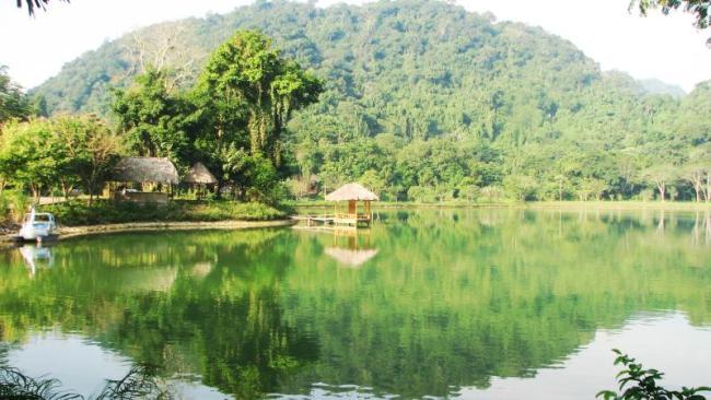 Cuc Phuong par Vũ Sơn Tùng a.k.a cedar