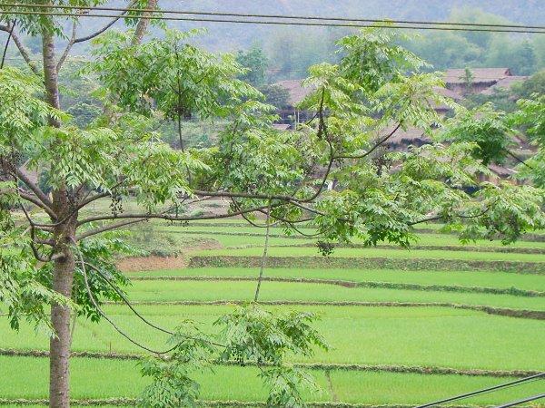 Muong village par Bruno!