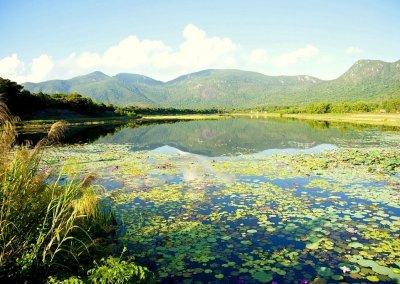 Les Parcs nationaux du Vietnam