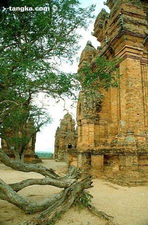 Vestiges de Cham, Vietnam