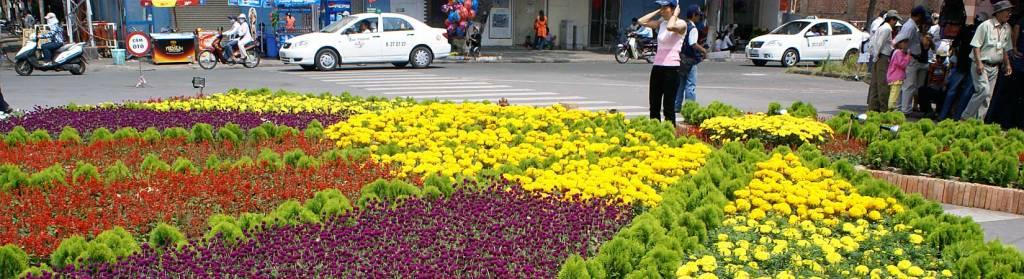 Décorations florales pour le Têt -Saigon, Vietnam
