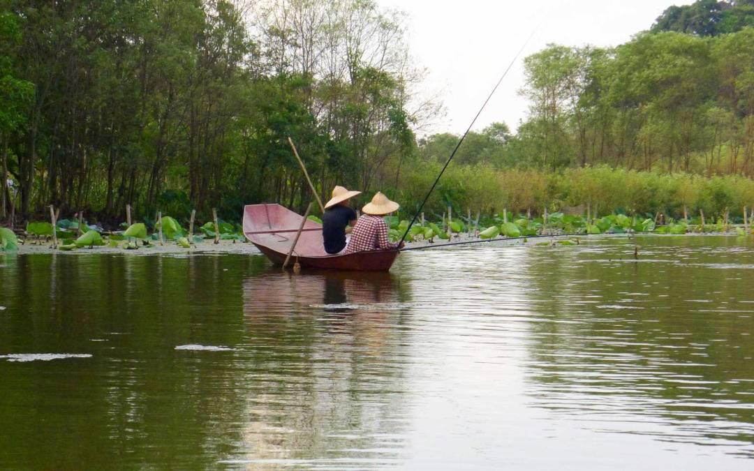 Retour à Hương Sơn, la Pagode des Parfums