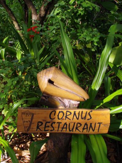 Cornus Restaurant aux Maldives par voyage en beauté