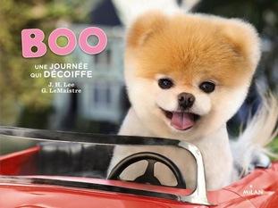 Boo le chien le plus mignon du monde Le livre par voyage en beauté