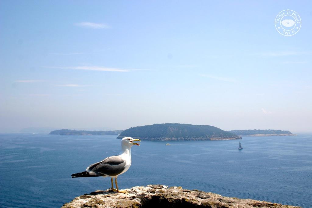 castelo-aragonese-10-voyage-en-beaute