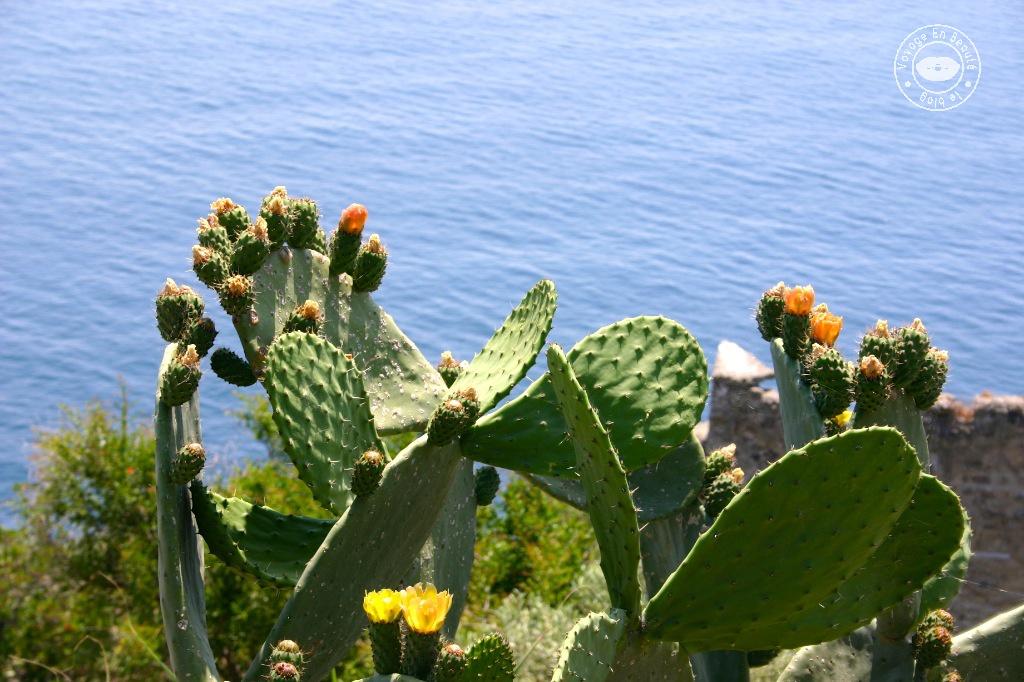 castelo-aragonese-14-voyage-en-beaute