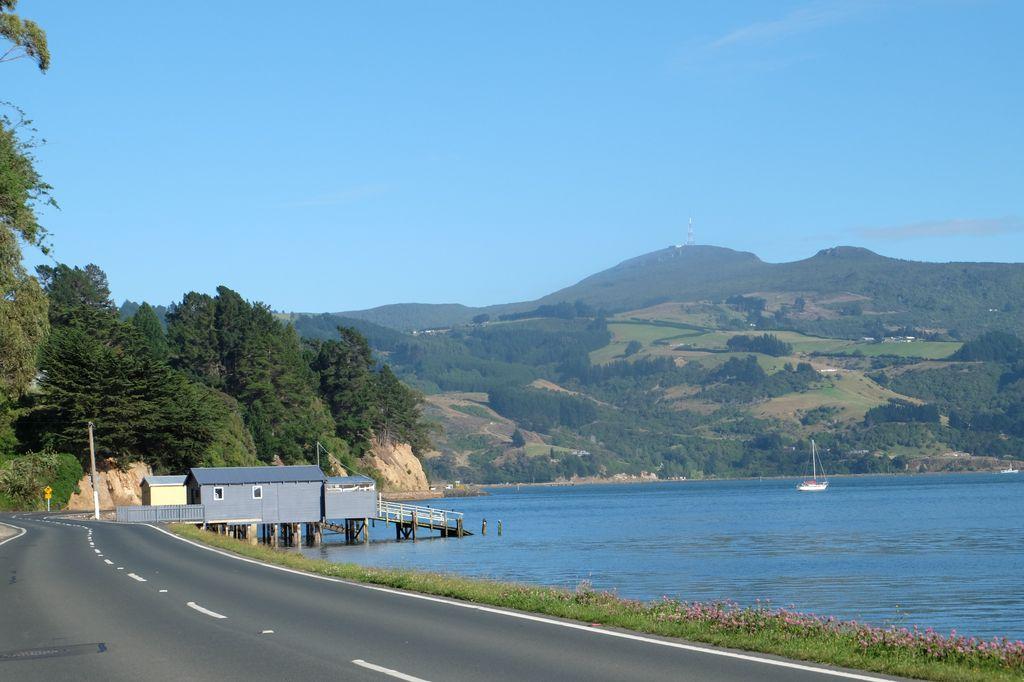 roadtrip-nouvelle-zelande-dunedin-otago-blog-voyage-04