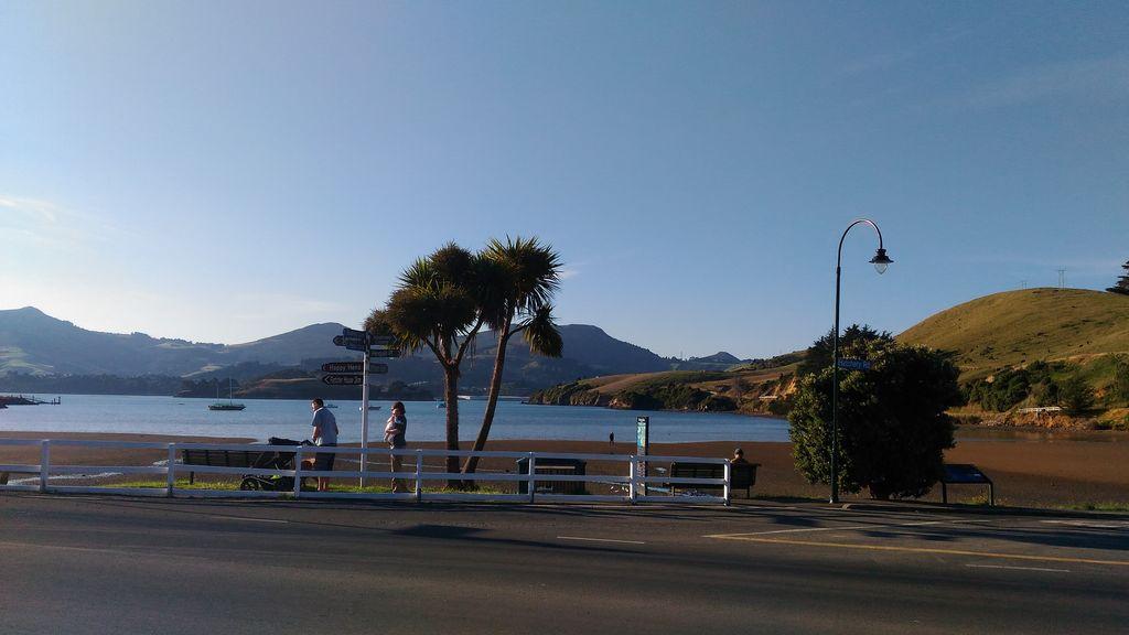 roadtrip-nouvelle-zelande-dunedin-otago-blog-voyage-20