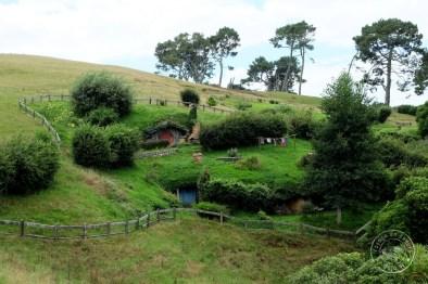 roadtrip-nouvelle-zelande-hobbiton-blog-voyage-27