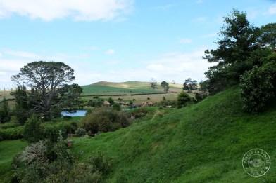 roadtrip-nouvelle-zelande-hobbiton-blog-voyage-33