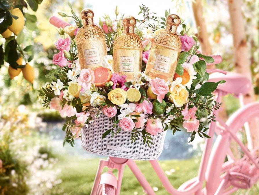 Guerlain-aqua-allegoria-parfum-pamplelune-parfumdo-pas-cher