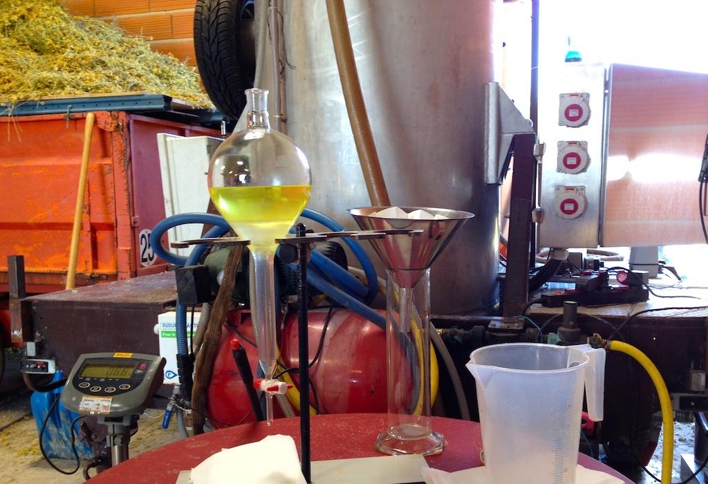 distillation-huile-essentielle-helichryse-immortelle-bio-naturactive
