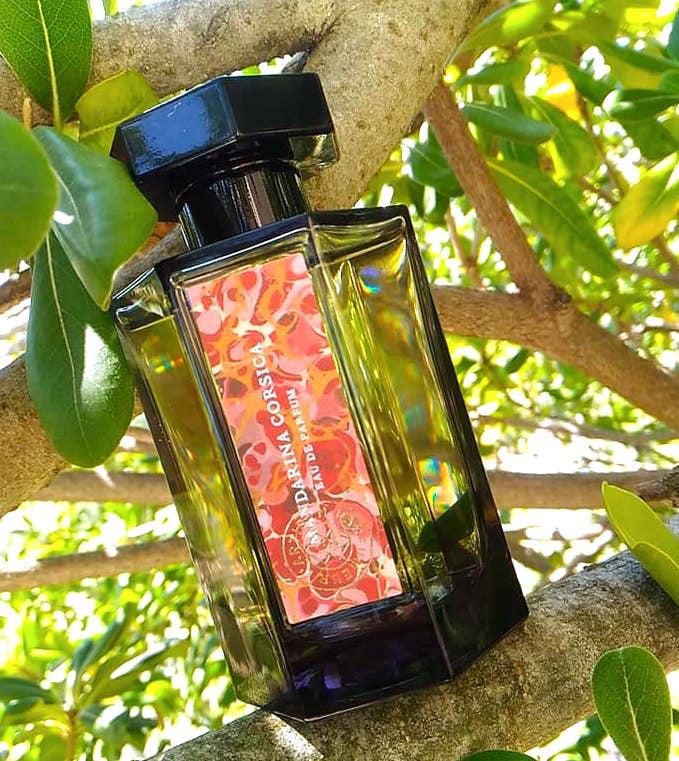 mandarina-corsica-parfum-ete-lartisan-parfumeur-avis-test