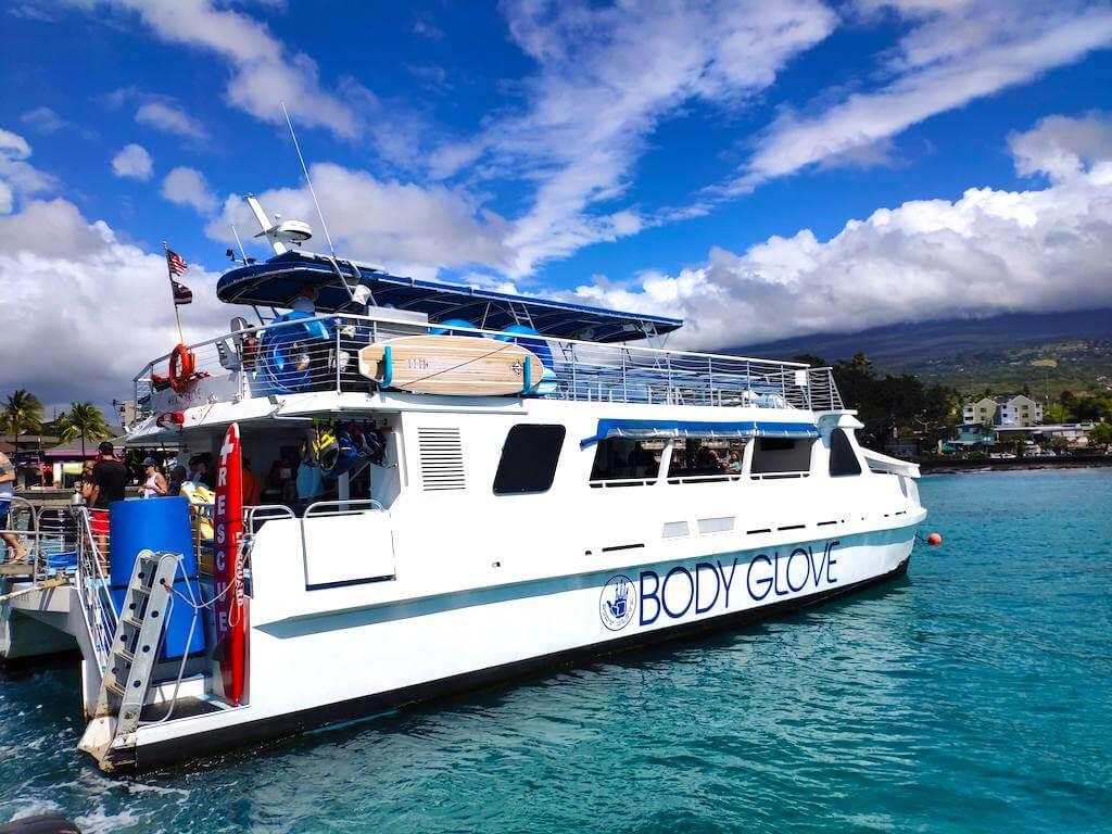 croisiere-dauphins-baleine-hawaii-big-island