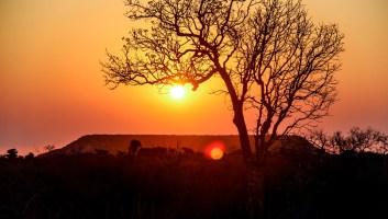 5 choses authentiques à faire ou à voir à Madagascar