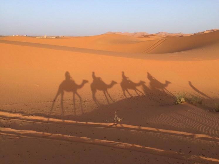Faire le plein de découvertes lors d'un voyage au Maroc