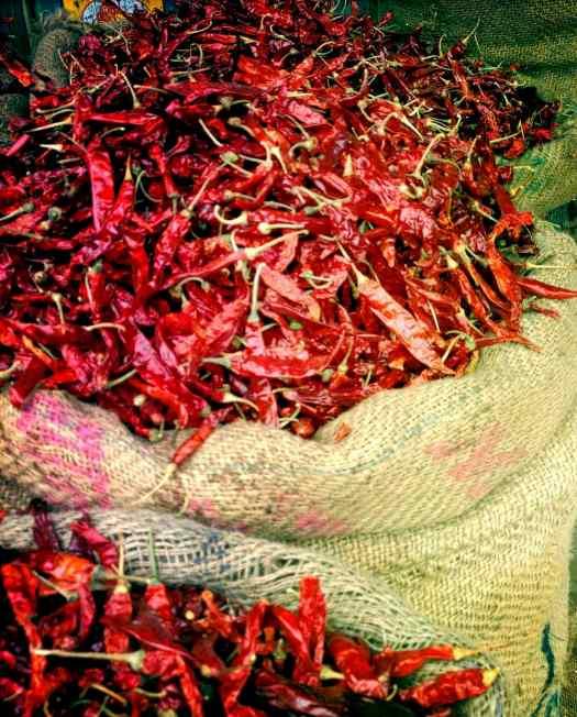 udaipur-market-chilis