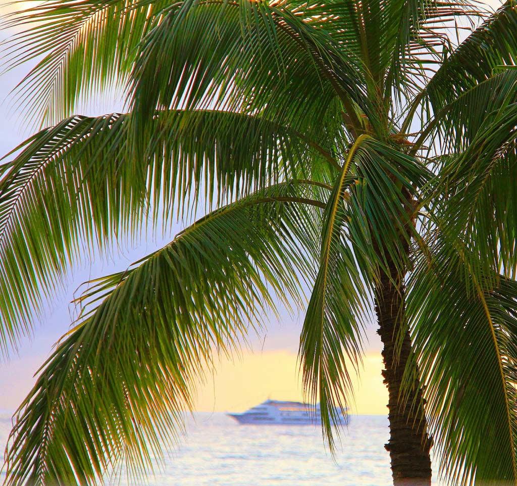Hawaii Cruise, 02/2015, taken by Diann Corbett