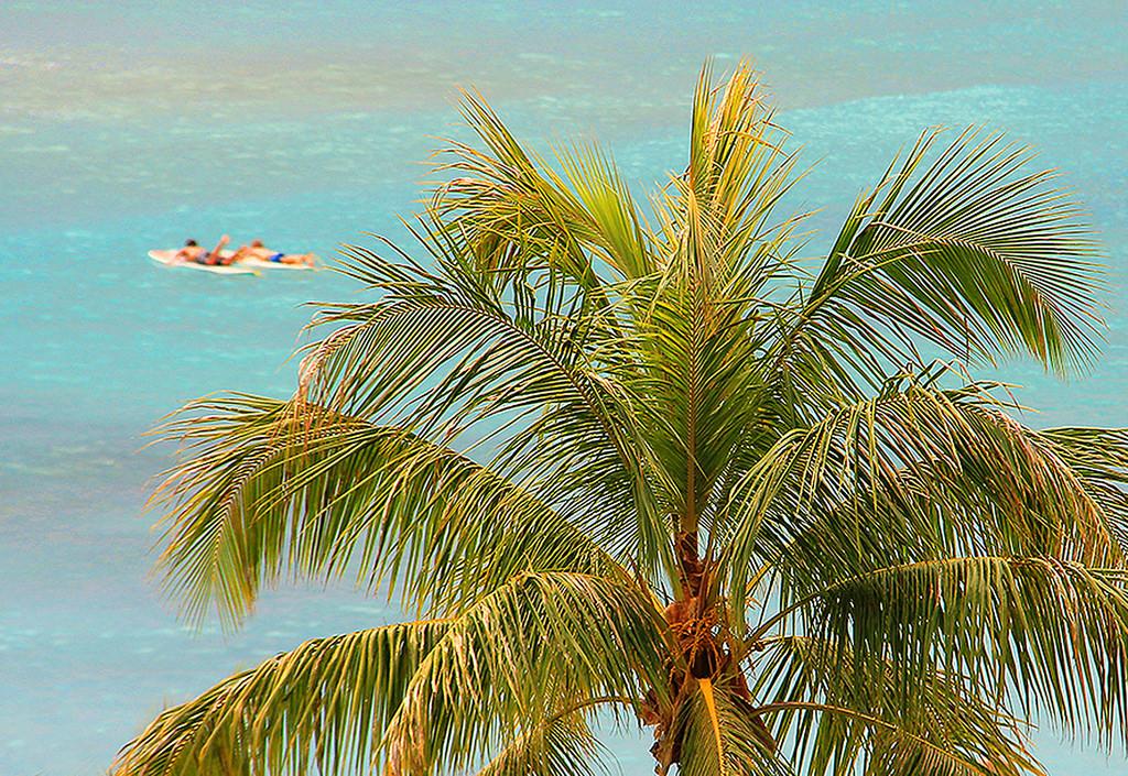 Surfers, Waikiki Beach, Oahu, Taken by Diann Corbett, 02/2015.