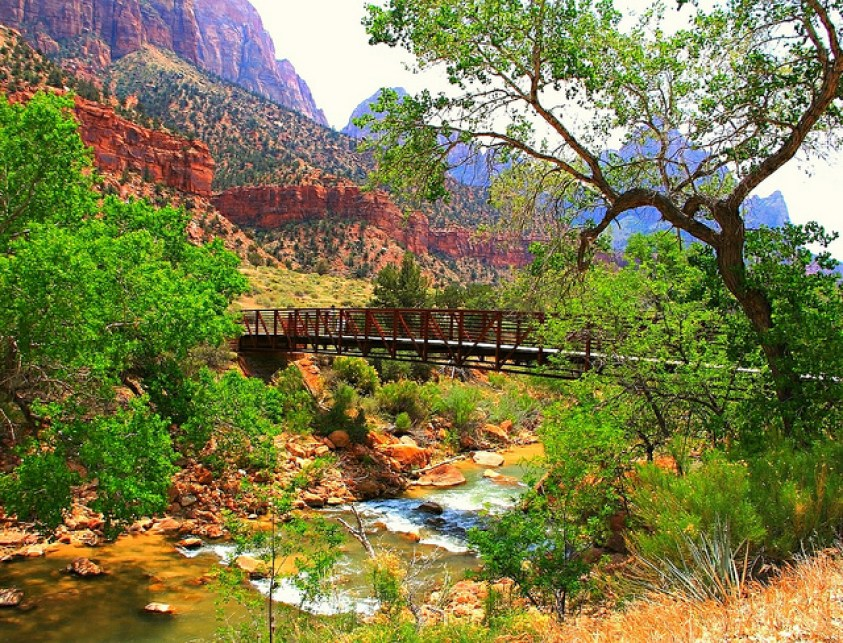 Zion National Park, Utah - Taken by Diann Corbett, 05/2013.