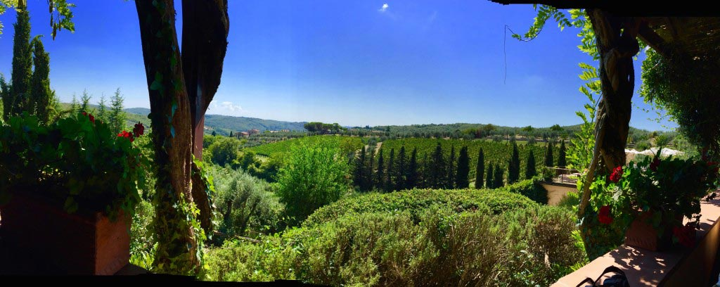 View from the Vignale, Radda di Chianti - Taken by Diann Corbett, 09/2015.