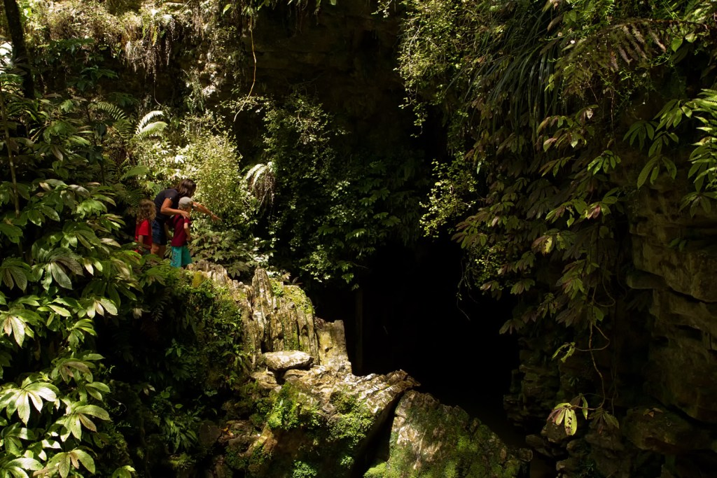 Waitomo - caves - 1