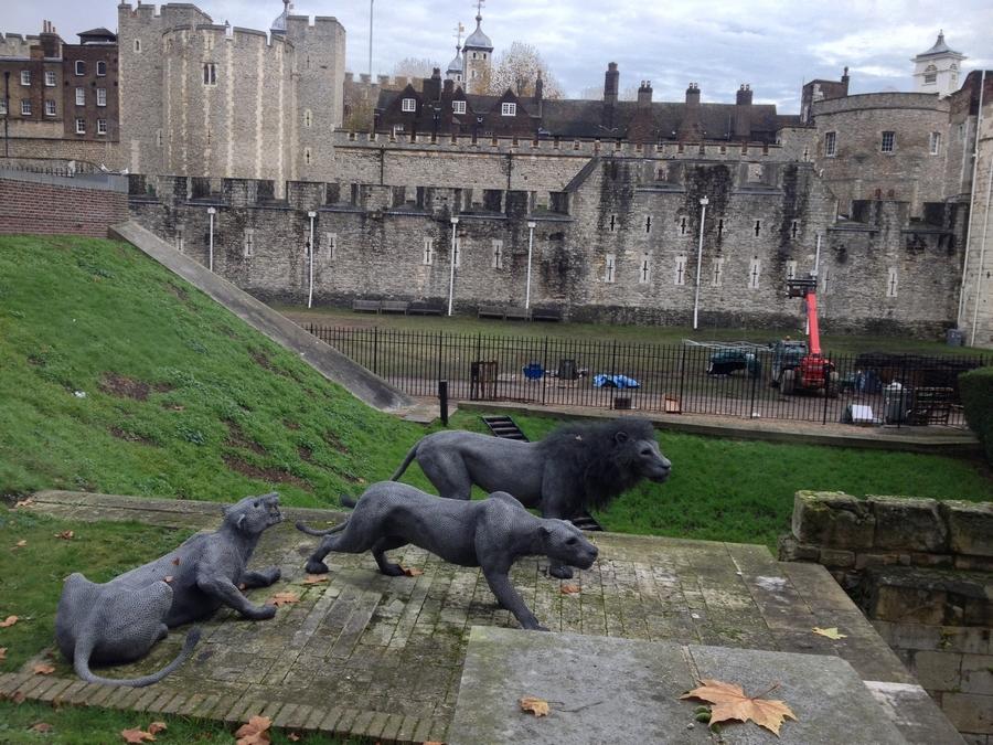 Statues de lions à la Tour de Londres - Londres, Angleterre