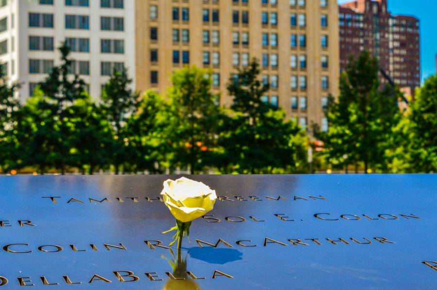 A white rose at the 9/11 Memorial - New York, United States
