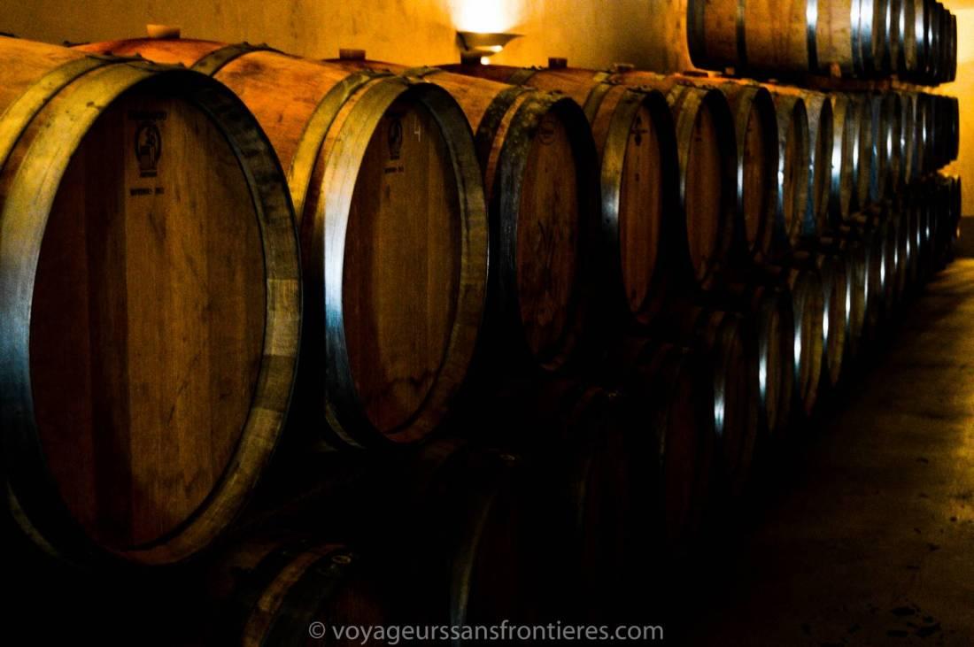 Wine barrels during the Haut Lirou Wine Tour - Saint Jean de Cuculles, France