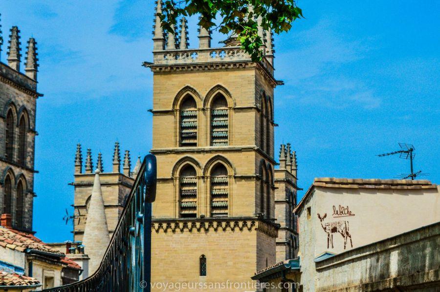 Vue sur la Cathédrale Saint-Pierre depuis la Place de la Canourgue - Montpellier, France