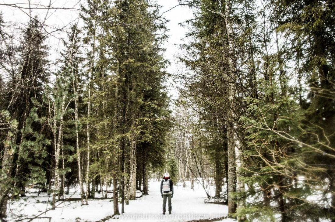 Nath taking a stroll in the Jura Park of the Lake Geneva Region - Vallée de Joux, Switzerland