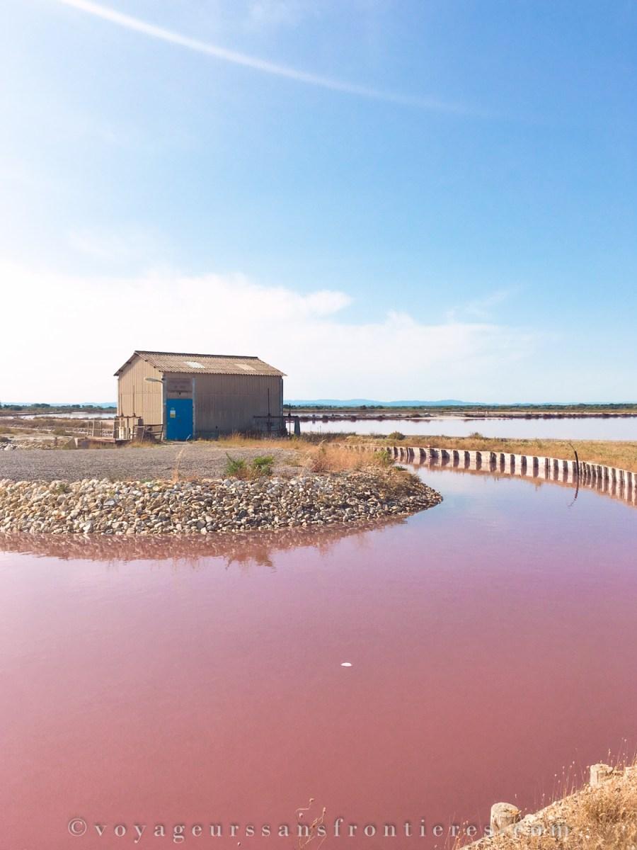 Salines, Aigues Mortes - Borderless Travelers