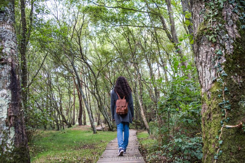 Nath en balade autour de l'étang de Paimpont - Bretagne, France