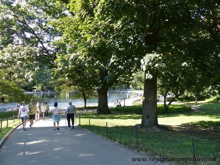 L'une des allées de Central Park, ombragé par les nombreux arbres qui s'y trouvent
