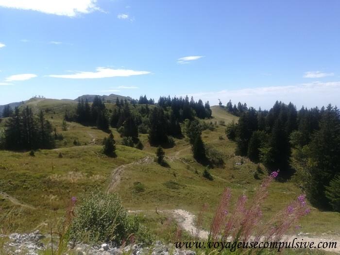 Vue sur le chemin qui conduit à sommet du grand Montrond.