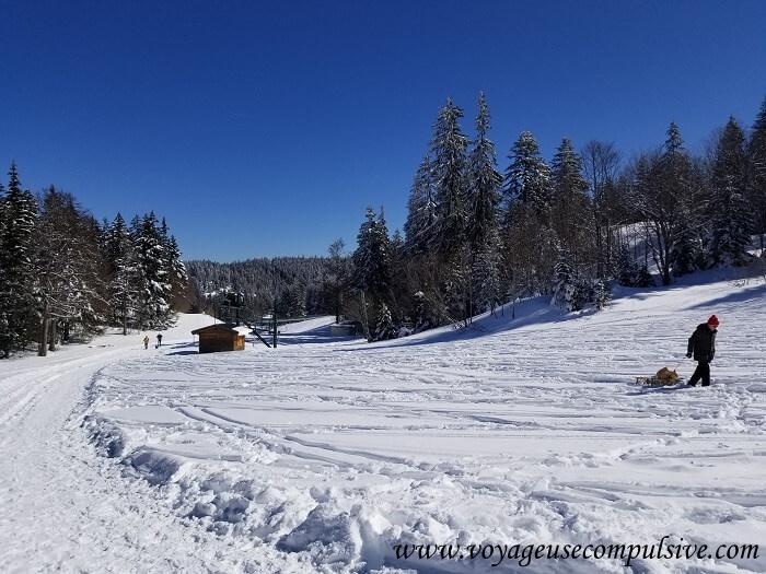Début des pistes de ski en direction du Petit Montrond, randonnée au départ cu col de la Faucille dans le Pays de Gex