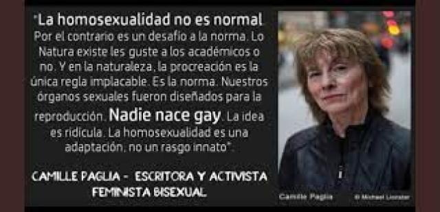 """EvilChuck en Twitter: """"Por Internet rulan supuestas frases de Camille en  contra de la homosexualidad, siendo ella bisexual. Esas frases son  verdaderas? Están sacadas de contexto? Aquí te paso un ejemplo.  https://t.co/PBSZj3tZsa…"""