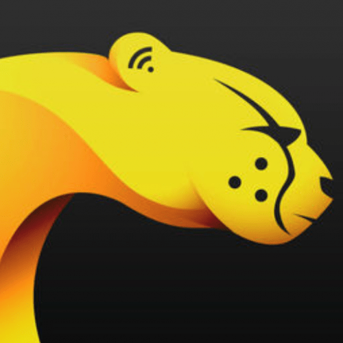 Cheetah VPN For PC
