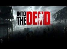 vr beginner's guide anniversary sale into the dead