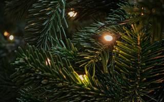 duurzaam decoreren voor kerst