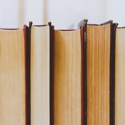 Favoriete non-fictie boeken 2020, de bibliotheek, favoriete fictie boeken, Vakantiebieb 2020: 9 leestips