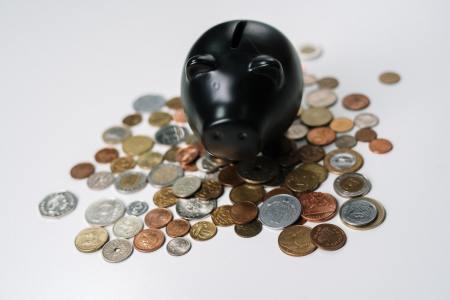Duurzaam beleggen, duurzaam beleggingsfonds ASN bank, Foto credit: CottonBro