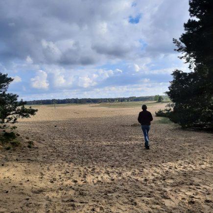 Vakantie in eigenland: de Veluwe