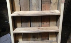99 Fantastic Models Of Wooden Pallet Shelves For Your Woodworking Project Inspiration (25)