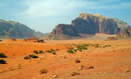 Webinar 'Leven na seksueel geweld, eenontdekkingsreisdoor de woestijn'