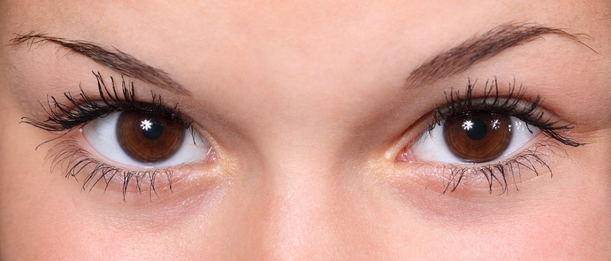 Remedies for under eye dark circles / Eye Care Remedies / Dark Circles