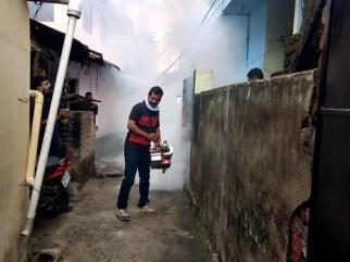 binu fogging (2)
