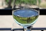 Бокал белого аргентинского вина на винограднике в Мендосе